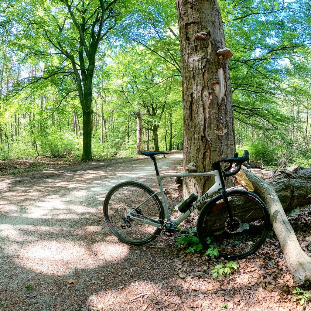 Factor Vista in het bos op gravel